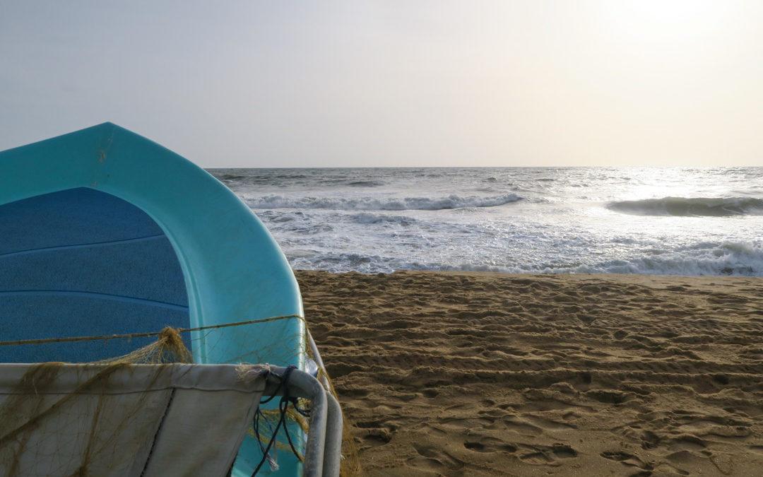 local interview | Starte deinen Sri Lanka Trip in Negombo